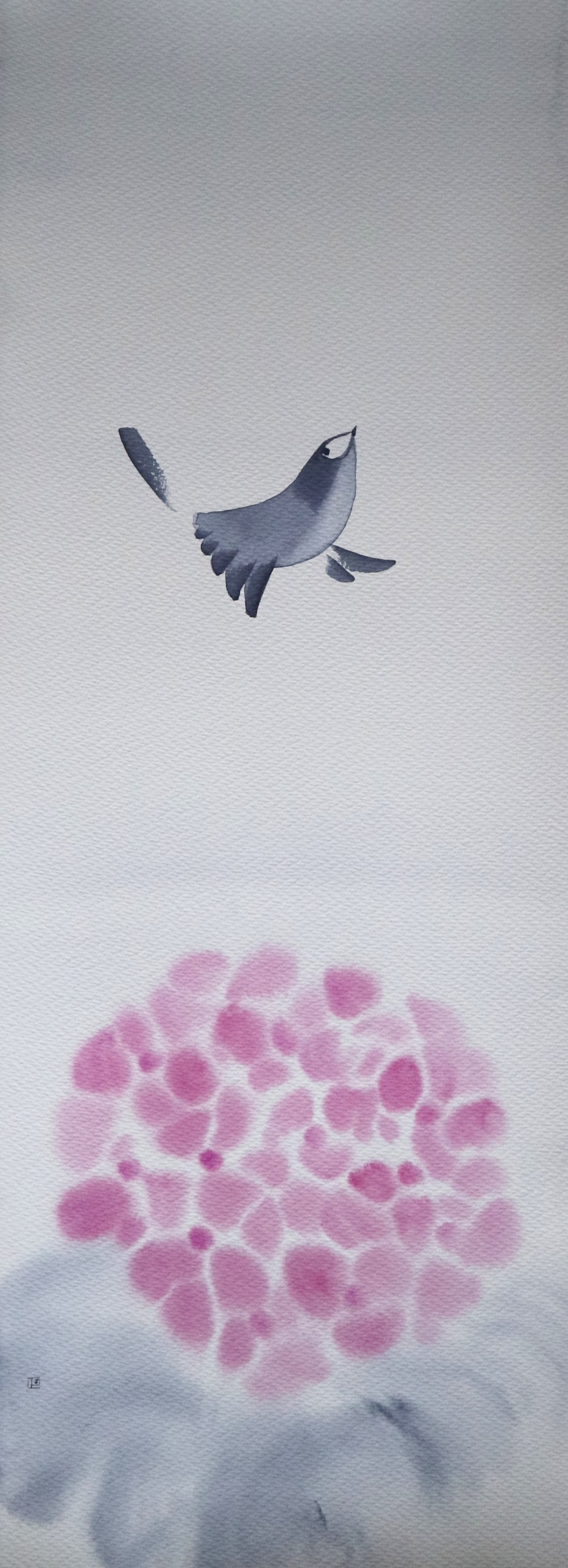 Hydrangeas-Carefree